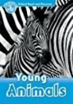 Young Animals Activity Book