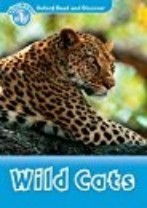 Wild Cats Activity Book