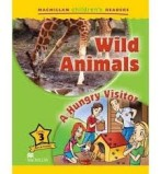 Wild Animals / A Hungry Visitor