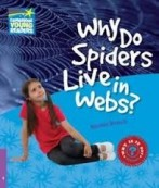 Why do Spiders Live in Webs?